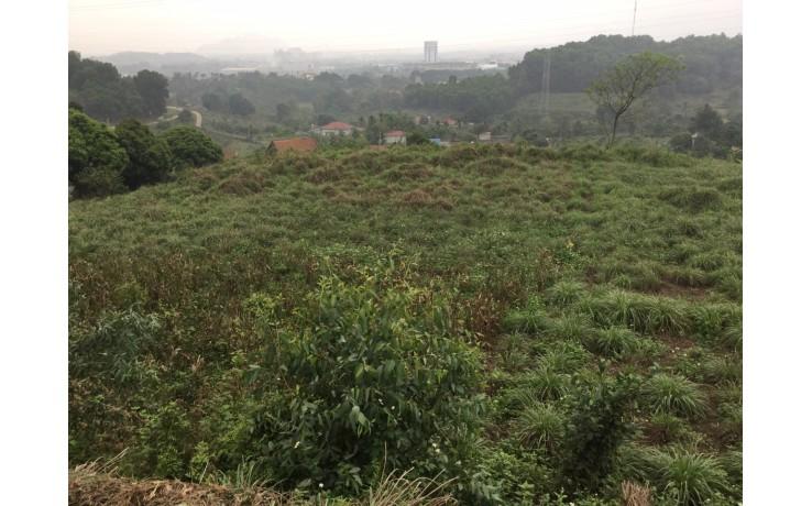 Bán 10 700 m2 đất thổ cư ở xã Hoà Sơn, Lương Sơn, Hoà Bình. Giá 380 N/m2.