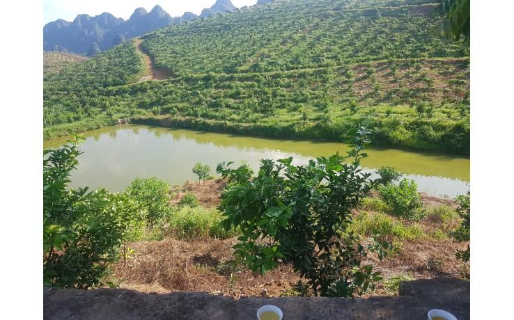 Bán lô đất diện tích 21 Ha tại xã Long Sơn, Lương Sơn, Hoà Bình. 13 tỷ
