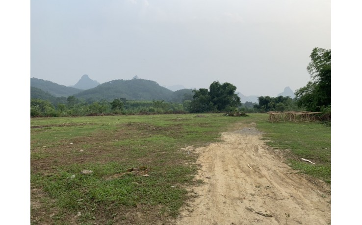 Bán 1 Ha đất thổ cư ở thị trấn Lương Sơn, Lương Sơn, Hòa Bình. 6,5 tỷ