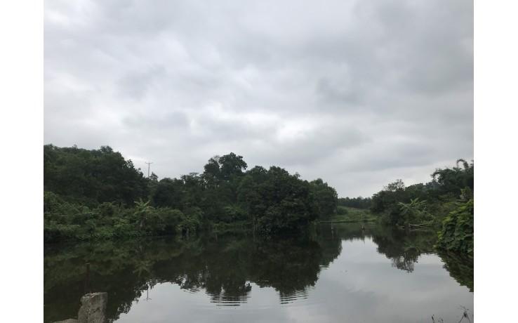Bán 2 Ha đất tại xã Hợp Hoà , Lương Sơn, Hoà Bình,  giá 8 tỷ.
