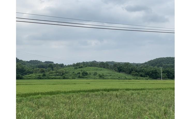 Bán 7000 m2 đất thổ cư ở xóm Giếng Xạ , xã Cư Yên, LS,HB. Giá 600 N/m2.
