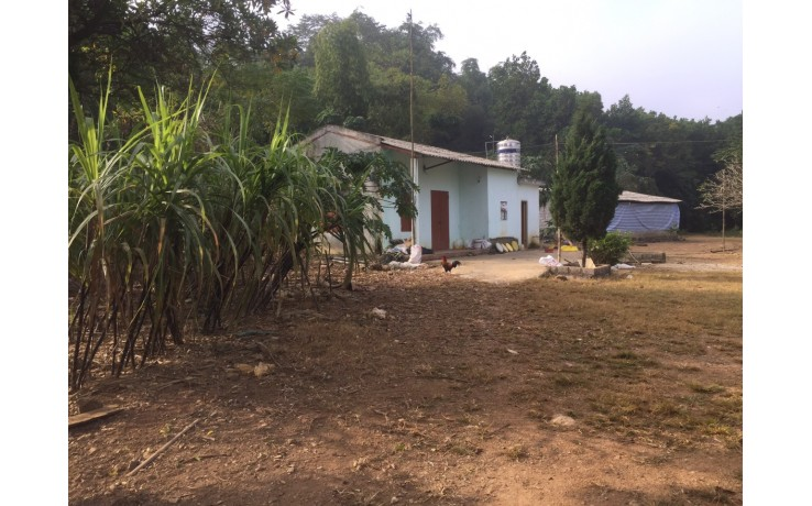 3000 m2 đất thổ cư tại xã Cư Yên, Lương Sơn, Hoà Bình. Giá 1,6 tỷ.