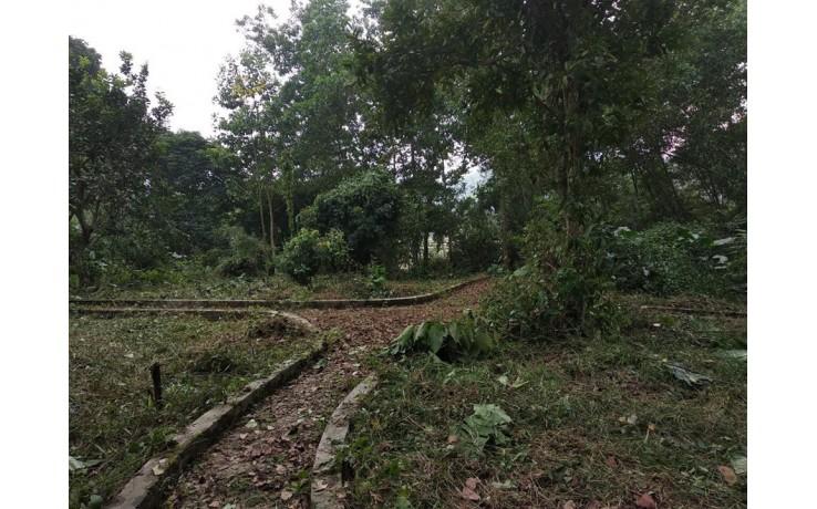 Chỉ nhỉnh 4tỷ 6000m2 800m2 thổ MT 80m tại Lương Sơn đường lớn có suối giá rẻ LH:0987757698