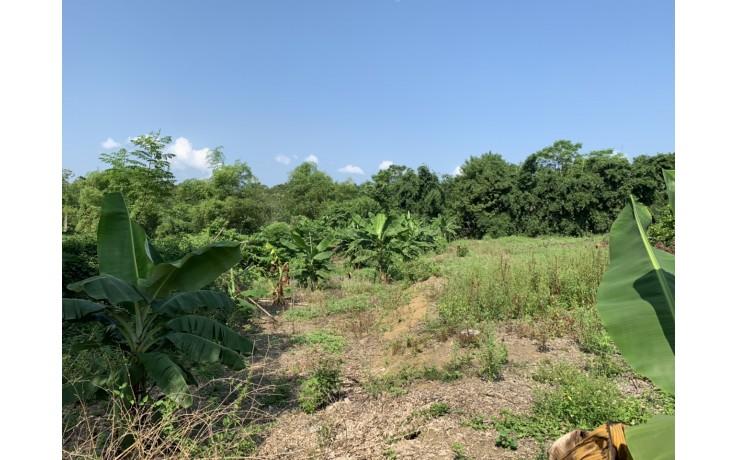 7000 m2 đất thổ cư tại Liên Sơn, Lương Sơn, Hoà Bình. 430 nghìn/m2.