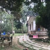 Cực hiếm! Bán khuôn viên nhà vườn 3600m2 Lương Sơn, Hòa Bình
