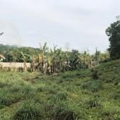 Đất ĐẸP– RẺ! 3500m2 thổ cư Lương sơn, Hòa Bình, giá chỉ hơn 1 tỷ.