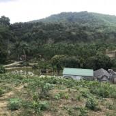 Tuyệt phẩm 6000m có 300m đất ở view cao thoáng có ao tuyệt đẹp để làm nhà vườn nghỉ dưỡng cuối tuần.