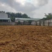 Bán đất Lương Sơn, Hòa Bình, 1000m2 có thổ cư bằng phẳng, gần KCN lớn