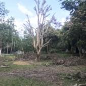 Bán gấp! 1ha có 800 đất ở Lương Sơn, Hòa Bình. Giá cả thương lượng.