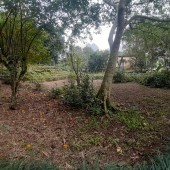 Cần bán lô đất 3500m2 có 800m đất ở tại xã lâm sơn