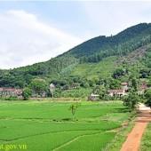 Gia đình chúng tôi có nhu cầu chuyển nhượng gấp 1000m2 đất, thổ cư 100m2. Tại xóm Trại mới, Xã Tiến Xuân- Thạc tHất- Hà Nội.