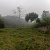 Cần chuyển nhượng gấp 4600m2 đất ở lâu dài và trồng cây lâu năm ở Lương Sơn Hòa Bình.