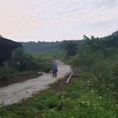 Bán 100ha đất sinh thái nghỉ dưỡng liên sơn hoà bình giá rẻ ,LH:0962941645
