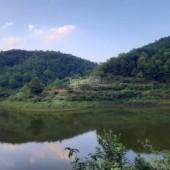 Bán gấp 20000m2 đất Kim Bôi Hoà Bình , có view hồ , suối đẹp