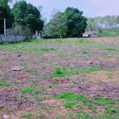 Bán 5000m2 đất thổ cư nhà vườn Lương Sơn Hòa Bình.