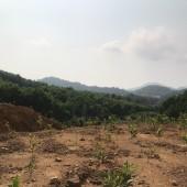 Cần chuyển nhượng lại 3ha đất làm trang trại chăn nuôi lợn tại Kỳ Sơn, Hòa Bình.