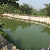 Tuyệt phẩm nhà vườn CHương Mỹ, Hà Nội. 2700m2 có suối, có ao, giá rẻ giật mình.