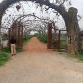 Cần bán gấp 2,4ha đất thổ cư nhà vườn làm du lịch, sinh thái, nghỉ dưỡng giá rẻ tại Ba Vì, Hà Nội.