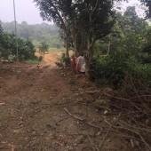 Bán 5000m2 đất Hòa Sơn Lương Sơn đường bê tông vào tận đất mặt tiền 26M nở hậu có ao vui thoáng giá hợp lý.