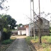 Bán đất nhà vườn Lương Sơn, Hòa Bình, hơn 1000m làm nhà vườn, giá rẻ.