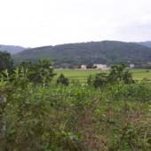 -Nhanh tay sở hữu lô đất đẹp 1040m2, 400 thổ cư, View cánh đồng thoáng mát. Giá rẻ cho các nhà đầu tư.