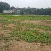 Cần bán lô đất 1400m tuyệt đẹp tại xã Cổ Đông, Sơn Tây, Hà Nội wiu tuyệt đẹp thoáng mát