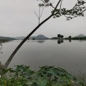 Chuyển nhượng gấp 2800m2 đất mặt hồ Thạch Thất, Hà Nội.