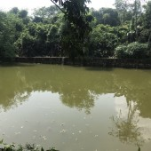 Cần chuyển nhượng khuôn viên nhà vườn, nghỉ dưỡng ở Thạch Thất, Hà Nội.