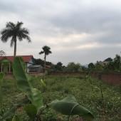 Bán đất Quốc Oai, Hà Nội, 1082m2 vuông vắn, giá rẻ.