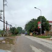 Chính chủ cần bán thủa ddaaats DT ;628m2 đất ở 240m2 tại Phú Cát -Quốc Oai Hà Nội