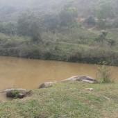 Cần bán 10000m2 đất Hoà Sơn Lương Sơn giá rẻ , LH:0962941645