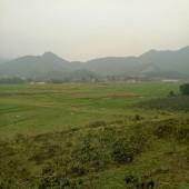 -Cần bán gấp 2ha đất rừng sản xuất , thôn Dục- Yên Bình- Thạch Thất- Hà Nội.