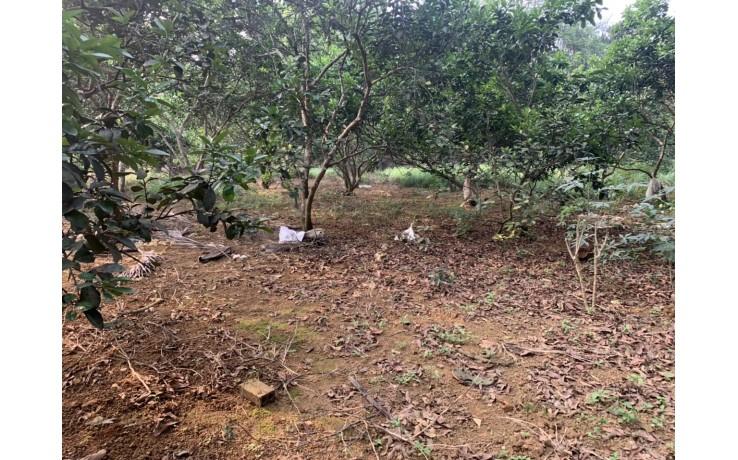 Bán 10309 m2 đất thổ cư tại Hoà Sơn, Lương Sơn, Hoà Bình, 650N/m2.