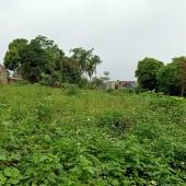 Chính chủ cần bán lô đất DT 4500m2 có 400m đất ở tại thôn Chóng Yên Bài Ba Vì Hà nội
