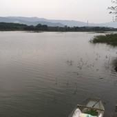 Cần chuyển nhượng gấp 2900m2 đất mặt hồ trong đất có ao thơ mộng tại Quốc Oai giá tốt.