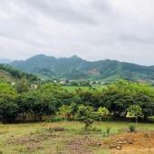 Bán gấp 20.000HA đất thổ làm dự án nghỉ dưỡng tại Thạch Thất HN đường vào to  viuw thoải đỉnh.