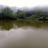 Bán tuyệt tình cốc Yên Bình Thạch Thất – Hà Nội. . Quý khách yêu cái đẹp, yêu thiên nhiên hoang sơ hãy sở hữu ngay 4 Ha đất này.