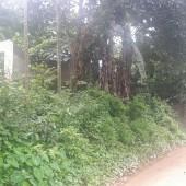*Nhanh tay mua  ngay mảnh đất giá rẻ 1800m2 ,có 200m2 đất ở.  * Vị trí: tại Xã Tiến Xuân Thạch Thất Hà Nội