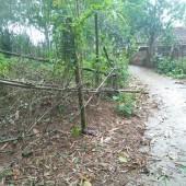 -Bán đất tại xã Yên Bình Thạch Thất Hà Nội, diện tích 760m2, có 400m2 đất ở.