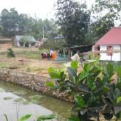 Bán mảnh đất nghỉ dưỡng 2000m2 giá rẻ cho các nhà đầu tư.