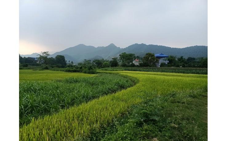 Bán đất nghỉ dưỡng tại Xã Yên Bình Thạch Thất Hà Nội 1940m2, có 400m2 đất ở