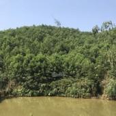 Cần bán 11ha đất RSX bám mặt đường lớn tại Kim Bôi, Hòa Bình