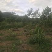 cần bán thửa đất  Tổng diện tích 4700m2, đất ở 500m, còn lại là 4200m2