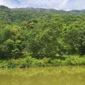 -Bán đất nghỉ dưỡng tại Tiến Xuân Thạch Thất Hà Nội diện tích 6600m2