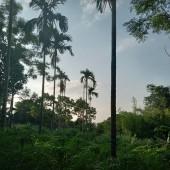 Bán đất nghỉ dưỡng tại Xã Yên Bình Thạch Thất Hà Nội 1992m2, có 400m2 đất ở.