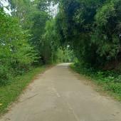 Bán đất tại xã Đông Xuân Quốc Oai Hà Nội giá rẻ dt 1600m2