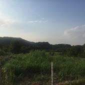 Bán đất nghỉ dưỡng  giá rẻ tại Yên Bài Ba Vì Hà Nội 1000m2