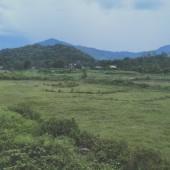 chính chủ cần bán thửa đất toognr Dt 3011m2 trong đó có 400m đất ở còn lại đất vườn tại ba vì à nội Khu vực :Bán Đất tại Huyện Ba Vì Hà Nội
