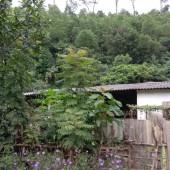bán đất mặt đường tại xã Lâm Sơn huyện Lương Sơn tỉnh Hòa Bình
