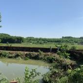 Bán 3500m view cánh đồng có ao, cây ăn quả Cổ Đông Sơn Tây giá rẻ